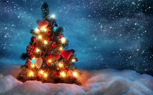 Christmas-Tree-In-The-Snow-Storm