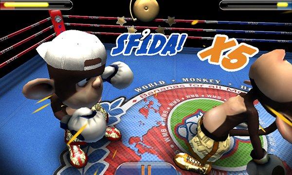 Monkey Boxing (2)