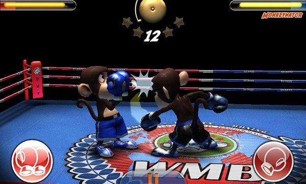 Monkey Boxing (3)