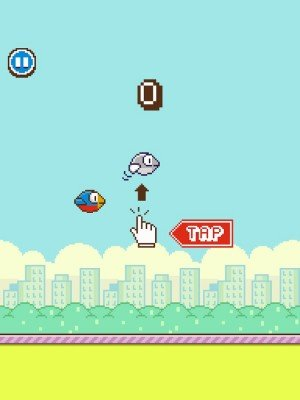 Flappy Wings (2)