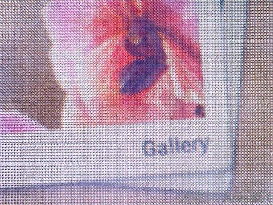 Gallery-Quad-HD-710x532