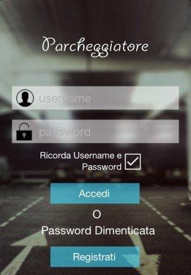 parcheggiatore (2)